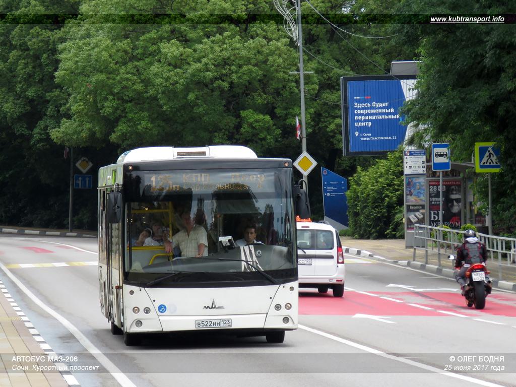 Автобус хоста роза хутор